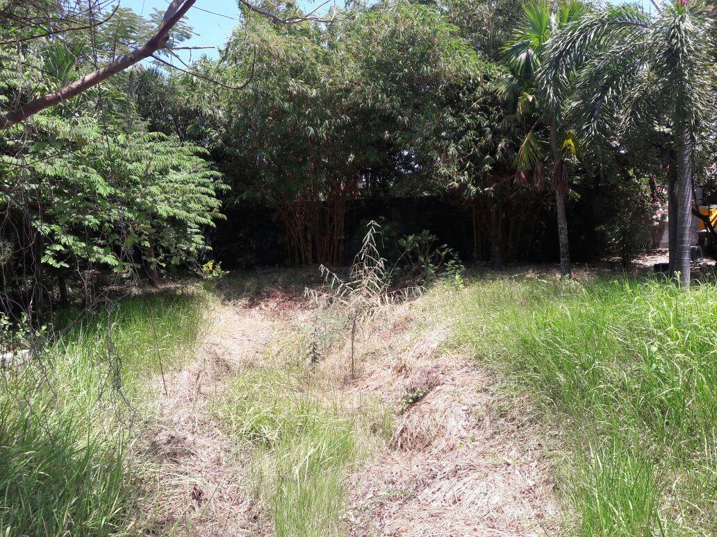 FREEHOLD LAND FOR SALE IN JALAN RAYA CANGGU